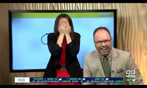 A News Anchor Accidentally Drew an R-Rated Cannon on Live TV